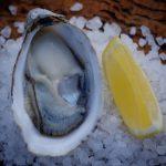 Freycinet Marine farm oyster