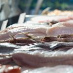 Mures Fishing – Fillets