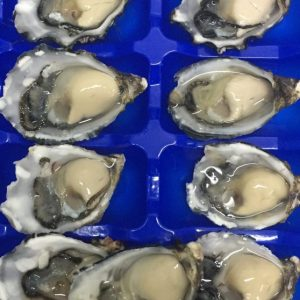 Blue Lagoon Oysters